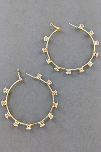 HOOP FASHION EARRINGS