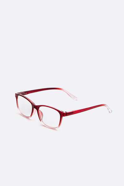 2 Tone Reading Glasses Set